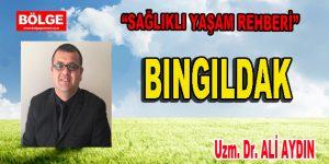 BINGILDAK