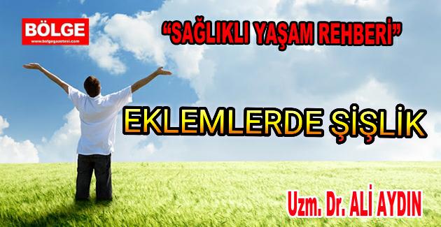 EKLEMLERDE ŞİŞLİK