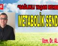 METABOLİK SENDROM