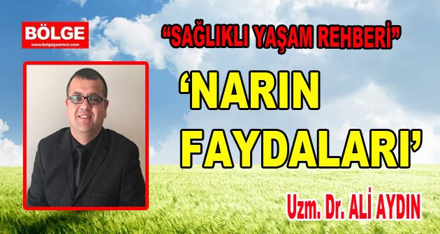 NARIN FAYDALARI