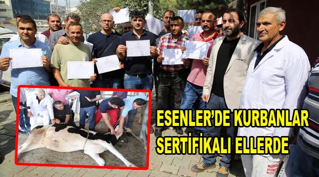 ESENLER'DE KURBANLAR SERTİFİKALI ELLERE EMANET