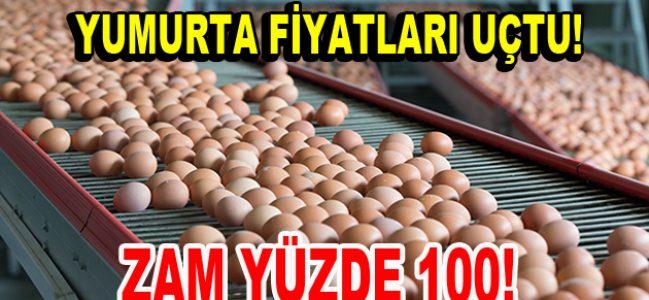 Yumurta fiyatları yüzde 100 arttı!