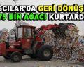Bağcılar'da 175 bin ağaç kesilmekten kurtarıldı