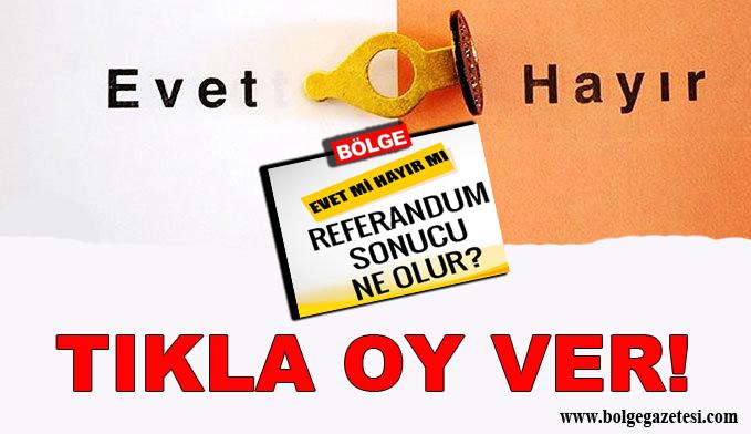 Referandum Anketi