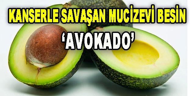 Kanserle savaşan mucizevi besin 'Avokado'