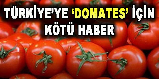 Türkiye'ye 'Domates' İçin Kötü Haber