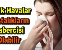 Sıcak havalar hastalıkların habercisi olabilir