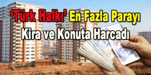 'Türk Halkı' En Fazla Parayı Kira ve Konuta Harcadı