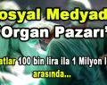 Sosyal Medyada Organ Pazarı 'Fiyatlar 100 bin lira ila 1 milyon arası'