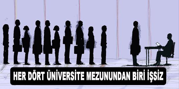 Her Dört Üniversite Mezunundan Biri İşsiz