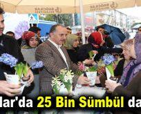 Dünya Kadınlar Günü'nde Bağcılar'da 25 Bin Sümbül dağıtıldı