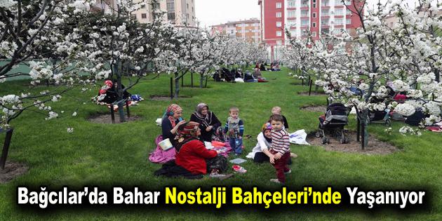Bağcılar'da bahar Nostalji Bahçeleri'nde yaşanıyor