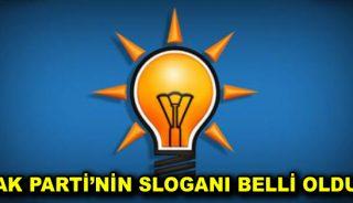 AK Parti'nin sloganı belli oldu