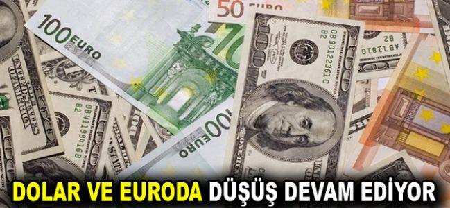 Dolar ve Euroda serbest düşüş devam ediyor