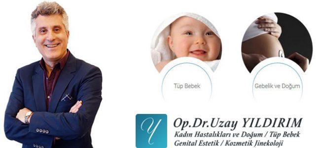 Gebelik ve doğum, tüp bebek yöntemleri