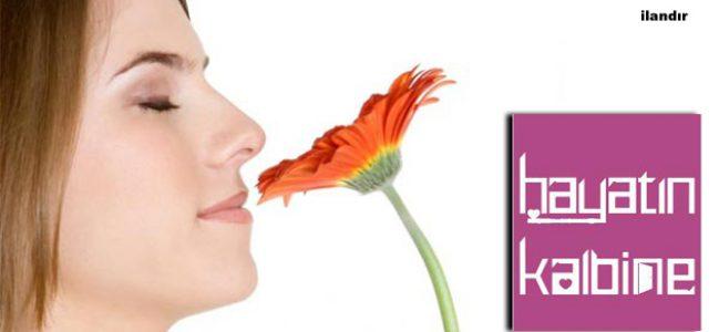 En Güzel Şişeli Parfümler
