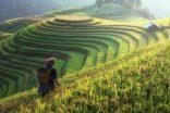 Vietnam Rehberi ile Vize İşlemlerini Çok Kısa Sürede Halledin