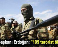 """Cumhurbaşkanı Erdoğan: """"109 terörist öldürüldü"""""""