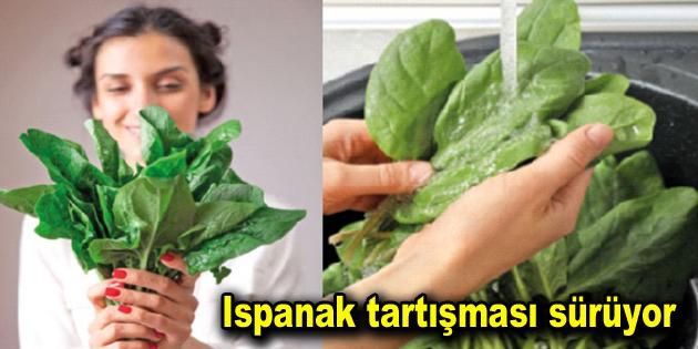 Ispanak tartışması sürüyor