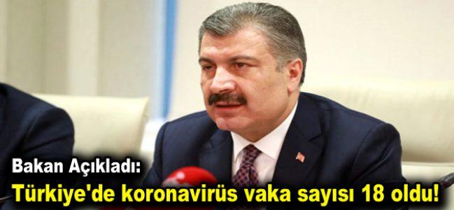 Türkiye'de koronavirüs vaka sayısı 18 oldu!