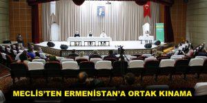 MECLİS'TEN ERMENİSTAN'A ORTAK KINAMA