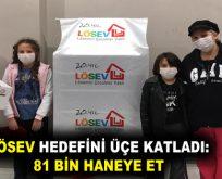 LÖSEV İstanbul'da ki ailelerine et yardımı sağlıyor
