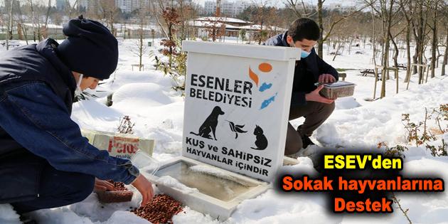 ESEV'den sokak hayvanlarına destek