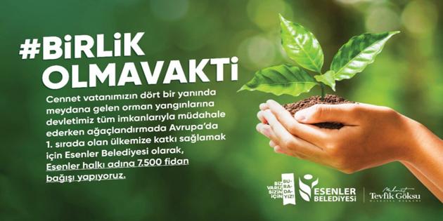 Esenler Belediyesi'nden 7 bin 500 fidan bağışı